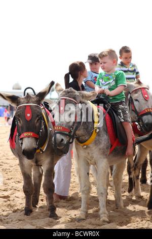 Donkey rides on Skegness beach, Lincolnshire, England, U.K. - Stock Photo