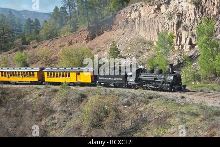 Colorado Durango The Durango Silverton Narrow Gauge Railroad steam train locomotive climbs mountain grade - Stock Photo