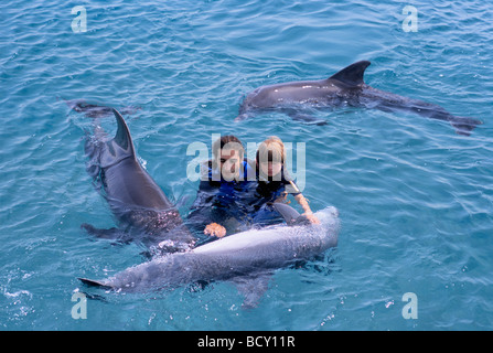 Autistic child receives therapy with dolphin trainer and Bottlenose Dolphins - Stock Photo