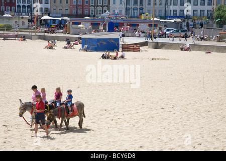 Children ride on the donkeys on Great Yarmouth's sandy beach - Stock Photo