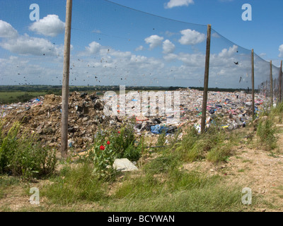 Birds congregate at a landfill site, Hertfordshire, UK - Stock Photo