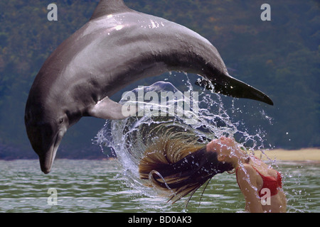 bottle-nosed dolphin with young woman in water - Stock Photo
