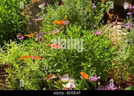 Arizona Phoenix Desert Botanical Garden Patrick Dougherty