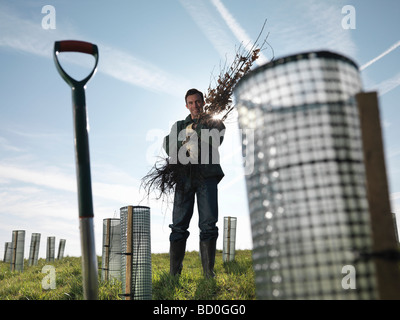 Man With Handful Of Young Trees - Stock Photo