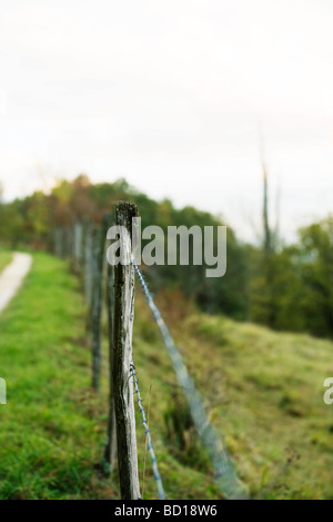 Wire fence bordering pasture, close-up - Stock Photo