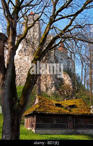 Romanian peasant cottage below Bran Castle (Dracula's Castle) in museum park - Stock Photo
