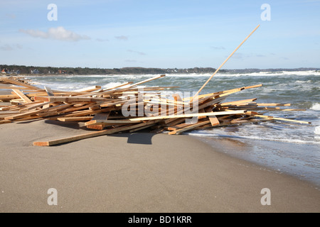 Timber deck cargo washed overboard from a Caribbean cargo vessel in the Kattegat Sea in Denmark and washed ashore - Stock Photo