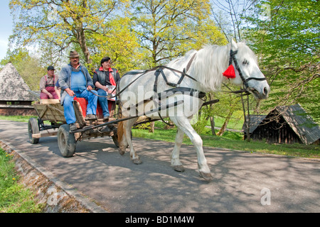 Romania's Museum of Traditional Folk Civilization, traditional transport, at Sibiu in Transylvania - Stock Photo