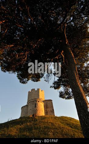 Tree and Romanesque St Nicolas Nicola Church Located on Earthen Hill in Fields of Prahulje near Nin in Dalmatia - Stock Photo