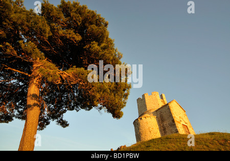 Tree and Romanesque St Nicolas Nicola Church Located on Earthen Hill in Fields of Prahulje near Nin in Dalmatia - Stock Photo