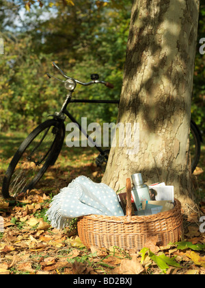 Picnic and bicycle under tree in Autumn - Stock Photo