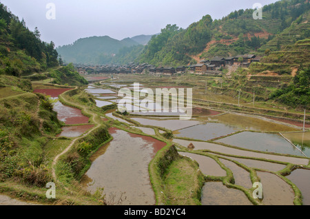 Rice terraces and Zhaoxing Dong Village Guizhou Province China - Stock Photo