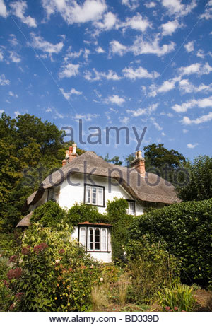 Thatched cottage near Brockenhurst in the New Forest, Hampshire, England - Stock Photo
