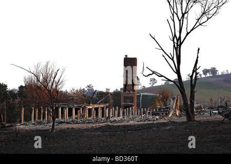 australian bush fire damage,australian bush fire aftermath,post australian bush fire, - Stock Photo