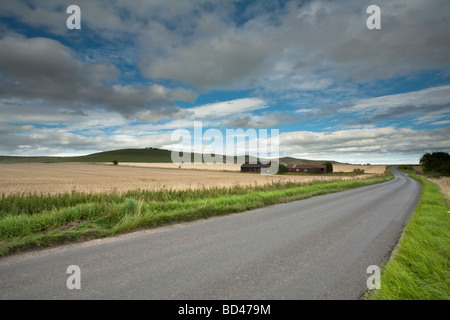View of Milk Hill on the Pewsey downs near Marlborough in Wiltshire Uk - Stock Photo