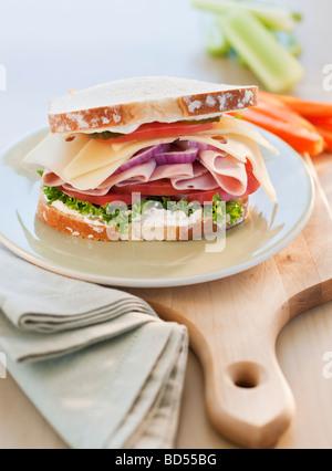 A tasty sandwich - Stock Photo