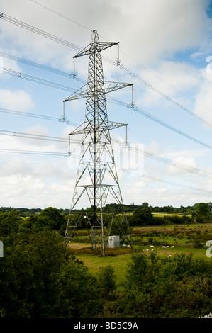 Electricity pylon national grid UK - Stock Photo