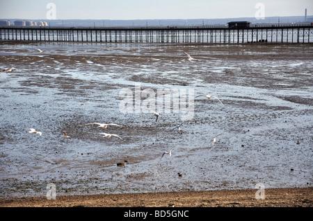 Southend Pier, Southend-on-Sea, Essex, England, United Kingdom - Stock Photo