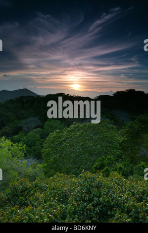 Evening in Soberania national park, Republic of Panama. - Stock Photo