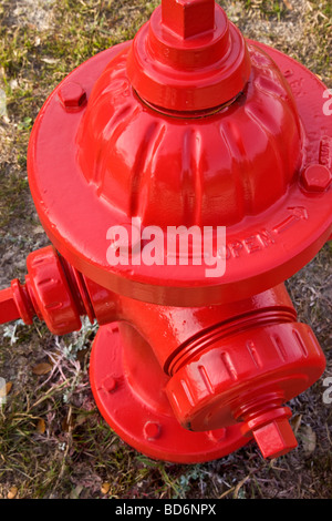 Red fireplug on neglected lawn . - Stock Photo