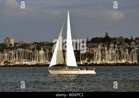 The charter yacht The Pride of Auckland sailing the Waitemata Harbour with Westhaven Marina and Auckland City beyond. - Stock Photo