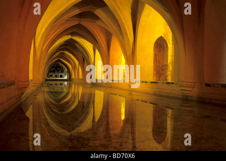 Royal residence, Real Alcazar palace, Reales Alcazares, Baños de Dona Maria de Padilla, a pond in the vaulted cellars, - Stock Photo