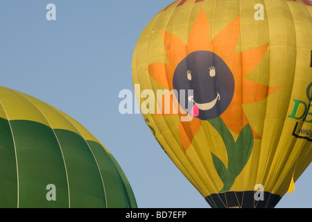 Bristol Hot-air Balloon Fiesta 2009, balloon with a sunflower and smiling face