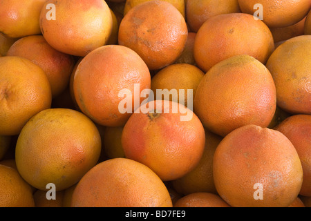 Texas 'Red'  Grapefruits. - Stock Photo