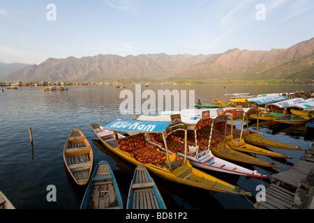 Water taxis on Dal Lake Srinagar - Stock Photo