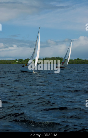 Sailing Boats on Lough Ree, River Shannon, Ireland - Stock Photo
