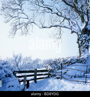 Snow covered rural scene at Misterton near Crewkerne - Stock Photo
