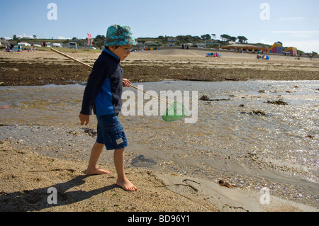 Boy aged six walking on Marazion beach at low tide with shrimping net, Cornwall, UK - Stock Photo