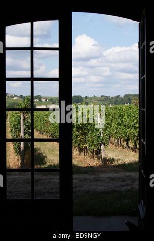 Vines, Chateau Tayac, St. Seurin-de-Bourg, near Bordeaux, Gironde, Nouvelle-Aquitaine, France - Stock Photo