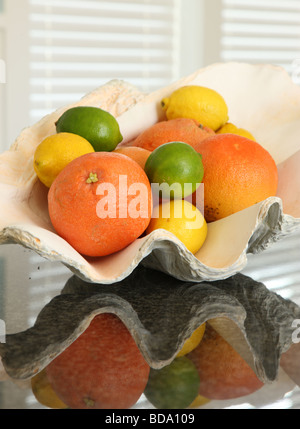 Citrus fruit in clamshell - Stock Photo