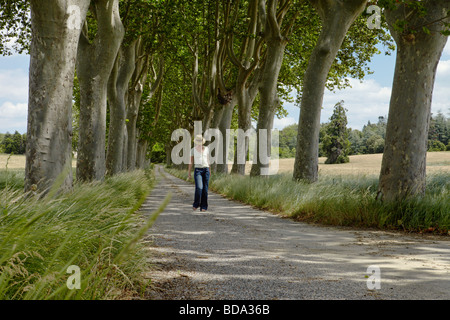 A young woman walking down a tree lined country road, lit by dappled light coming through leaves. - Stock Photo