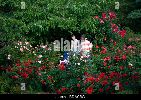 The Rose Garden in Portland, Oregon Stock Photo: 10287452 - Alamy