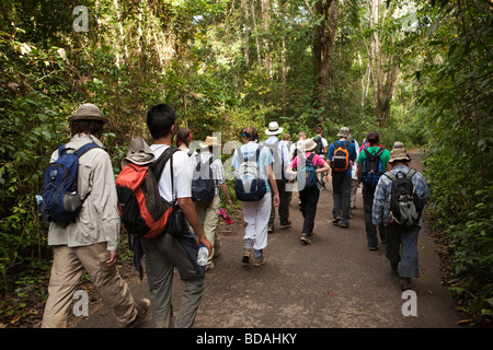Indonesia Sulawesi Operation Wallacea sixth form students walking along road through forest - Stock Photo