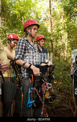 Indonesia Sulawesi Operation Wallacea Lambusango forest reserve teaching canopy access group - Stock Photo