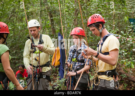 Indonesia Sulawesi Operation Wallacea Lambusango forest reserve canopy access student instruction - Stock Photo