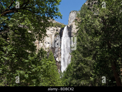 A view through large green trees of scenic Bridal Veil Falls drop of 620 feet in forest of Yosemite National Park - Stock Photo