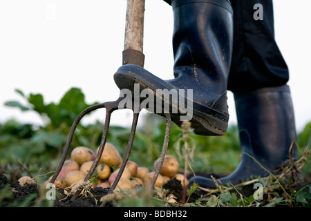 detail of farmer in rubber boots using pitchfork - Stock Photo