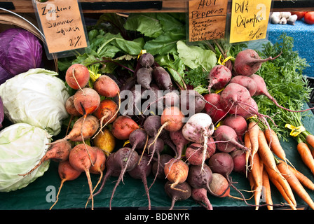 a variety of different colored root vegetables with cabbages displayed for sale at farmers green market Bellingham - Stock Photo