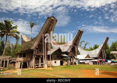 Indonesia Sulawesi Tana Toraja Bebo recently built tongkonan rice barn in family compound - Stock Photo