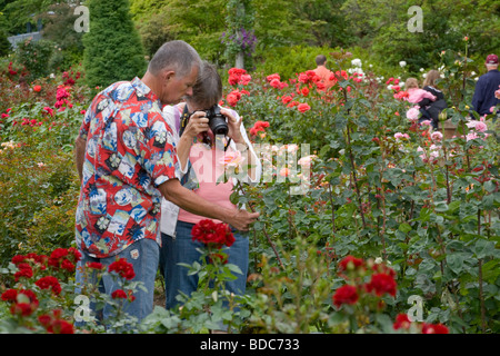 International rose test garden in portland oregon the city of roses stockfoto lizenzfreies for Portland international rose test garden