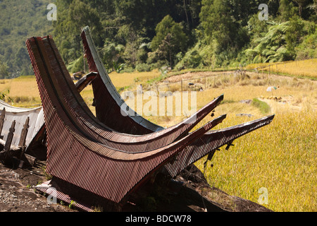 Indonesia Sulawesi Tana Toraja traditional tongkonan shaped graves in paddy field - Stock Photo