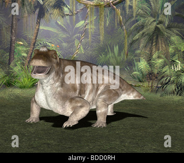 dinosaur Keratocephalus - Stock Photo