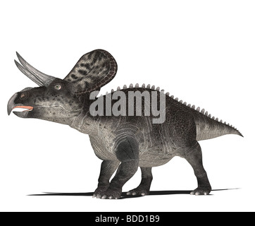 dinosaur Zuniceratops - Stock Photo