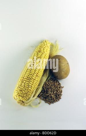 energie plants for bio fuel - Stock Photo
