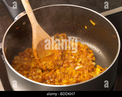 Shot 6 (Cooking Onion in Curry Paste) - Stock Photo