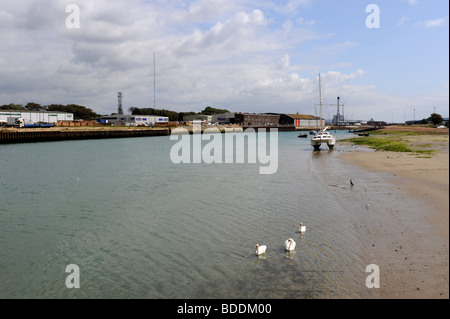 Swans on the River Adur at Shoreham Harbour in West Sussex UK - Stock Photo